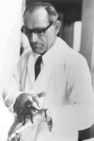 Wolfgang Bücherl